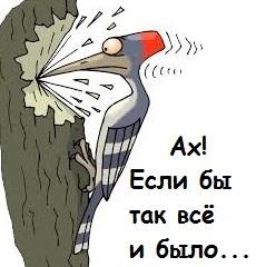 Загадка природы или не знаю... Орнитологи есть? - отзовитесь