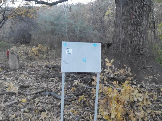 Табличка для старого дуба продолжает эволюционировать